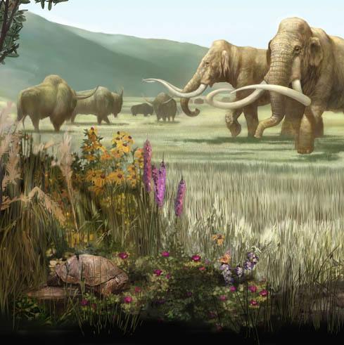 Pleistocene North America