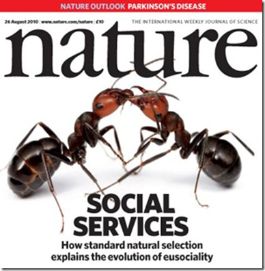 Nature-ants